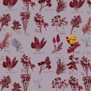 Inprint Chelsea Physic Garden - 4050 - Named Herbs - Lavender - 8951 P40 - Cotton Fabric